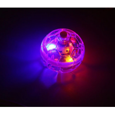 Flashing Ball Pet Toy
