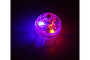 Flashing Ball Pet Toy